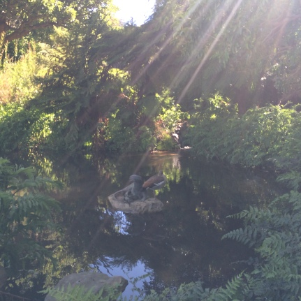 Descended the canopy and chanced upon this fairytale -like pond with some ducks bathing.