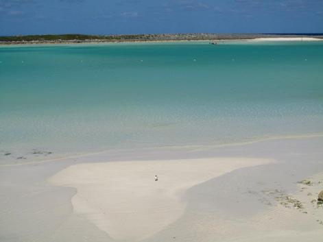 Idyllic beach setting.