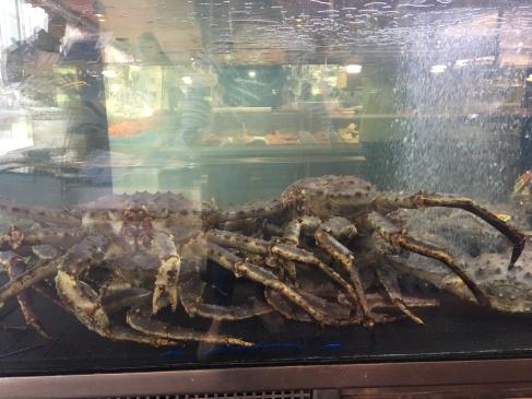 Humongous Crabs!