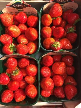 Strawberries with Vanilla Cream for dessert.