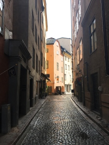 Mårten Trotzigs alley is the narrowest alley in Gamla Stan, only 90 centimeters wide at its narrowest point.
